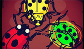 Draw_Something_121101_beetle-tmb