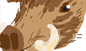 Draw_Something_130113_boar-tmb